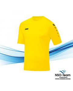 SV Eidelstedt Trainingsshirt TEAM